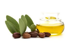 Ingrediente - Aceite de Jojoba